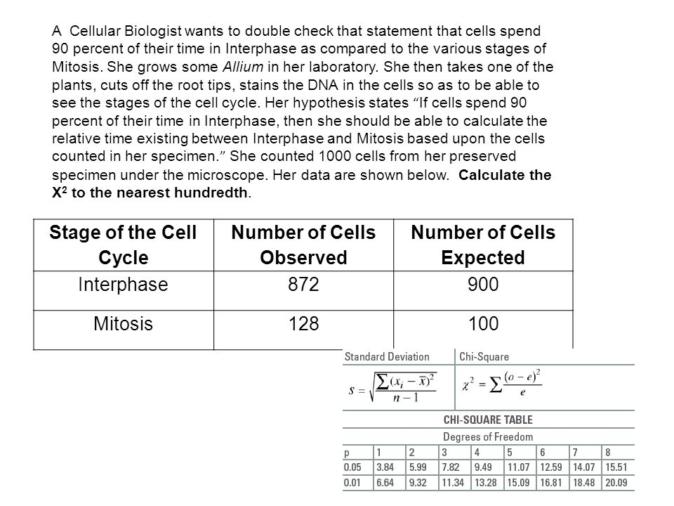 Number of Cells Observed Number of Cells Expected