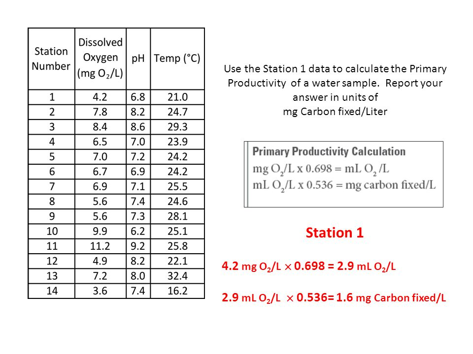 Use the Station 1 data to calculate the Primary Productivity of a water sample. Report your answer in units of mg Carbon fixed/Liter