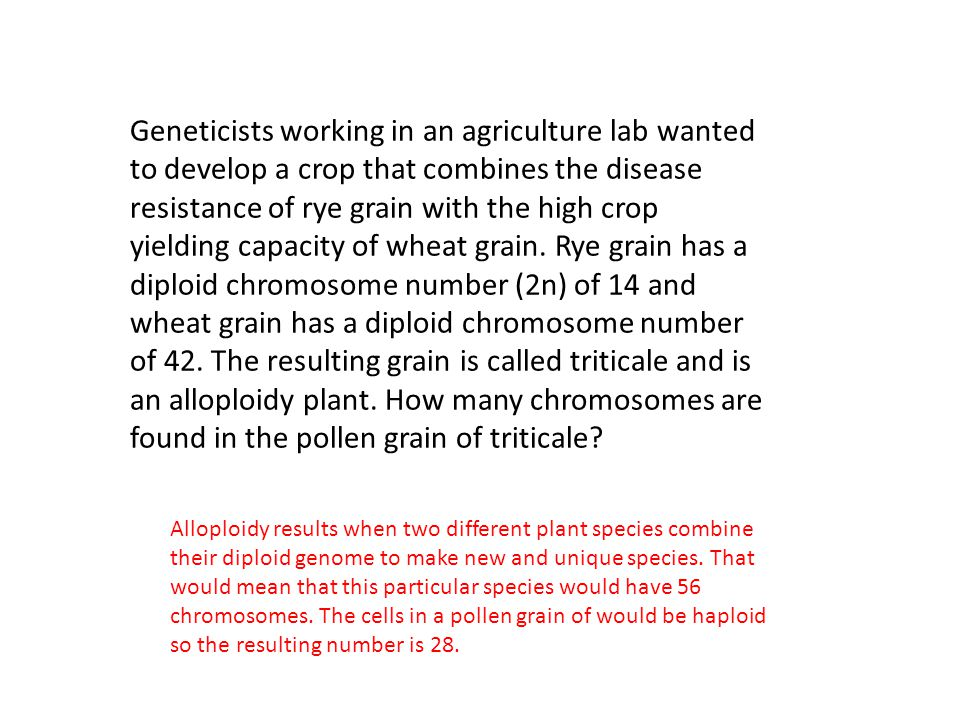 Geneticists working in an agriculture lab wanted to develop a crop that combines the disease resistance of rye grain with the high crop yielding capacity of wheat grain. Rye grain has a diploid chromosome number (2n) of 14 and wheat grain has a diploid chromosome number of 42. The resulting grain is called triticale and is an alloploidy plant. How many chromosomes are found in the pollen grain of triticale