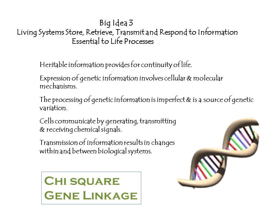 Chi square Gene Linkage Big Idea 3
