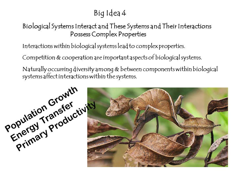 Population Growth Energy Transfer Primary Productivity Big Idea 4
