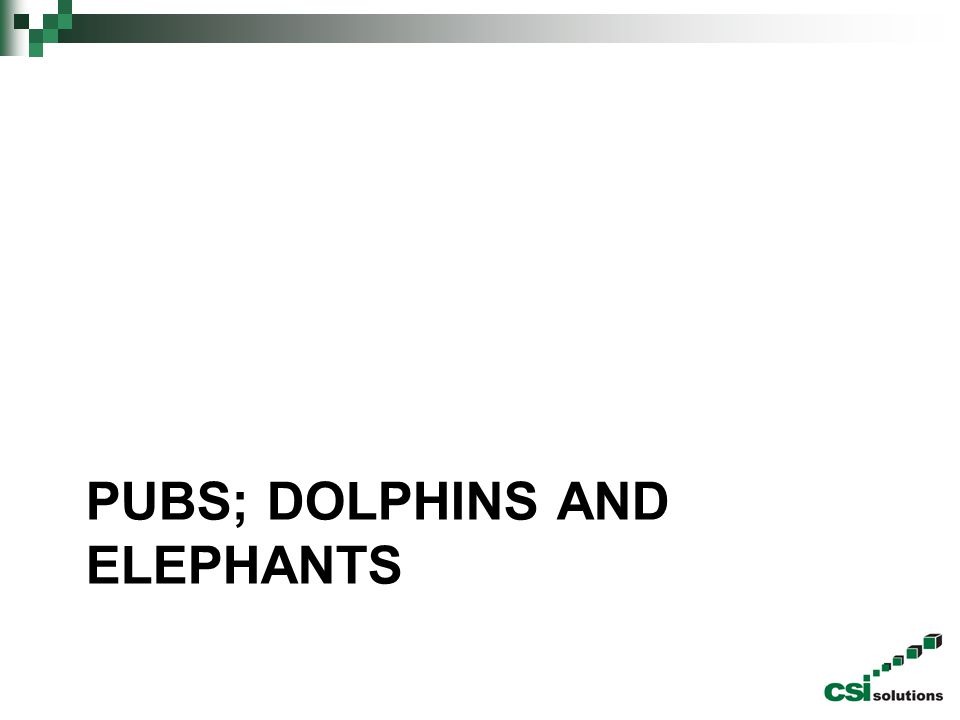 Pubs; dolphins and elephants