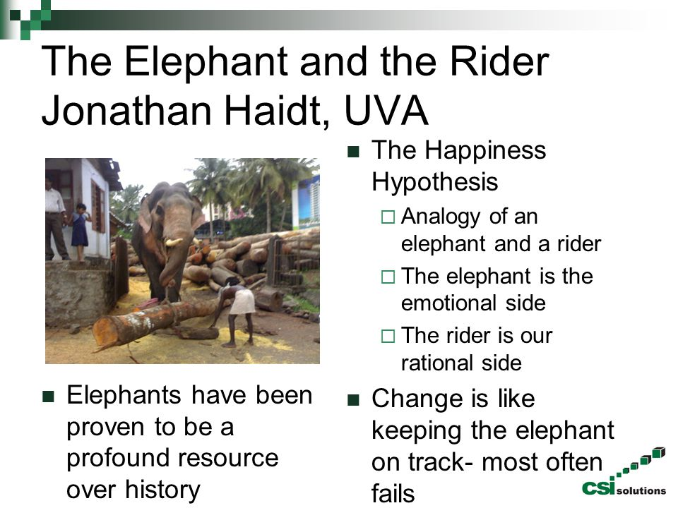 The Elephant and the Rider Jonathan Haidt, UVA