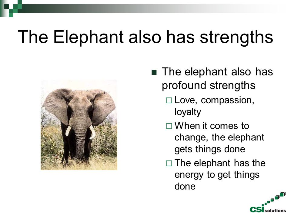 The Elephant also has strengths