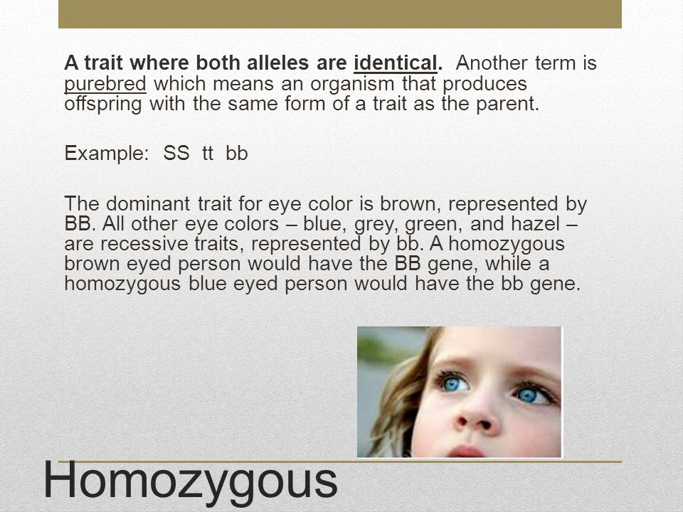 A trait where both alleles are identical