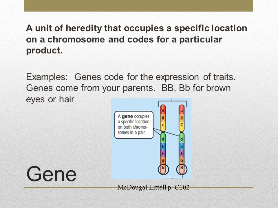 A unit of heredity that occupies a specific location on a chromosome and codes for a particular product. Examples: Genes code for the expression of traits. Genes come from your parents. BB, Bb for brown eyes or hair