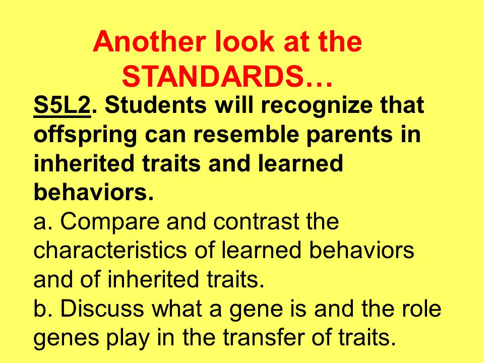Another look at the STANDARDS…