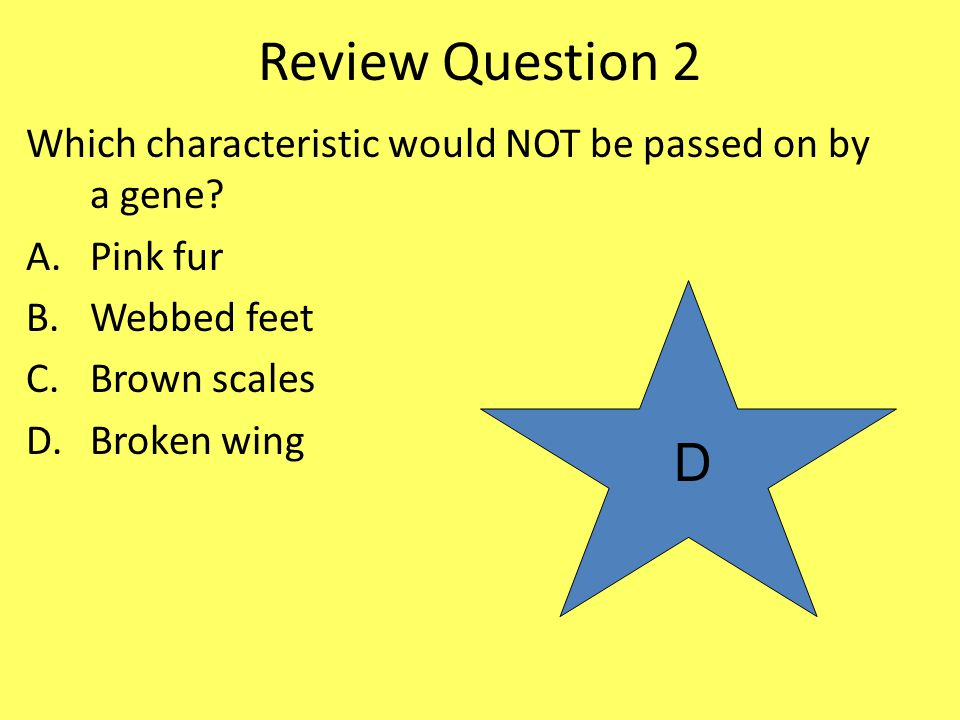 Review Question 2 Which characteristic would NOT be passed on by a gene Pink fur. Webbed feet. Brown scales.