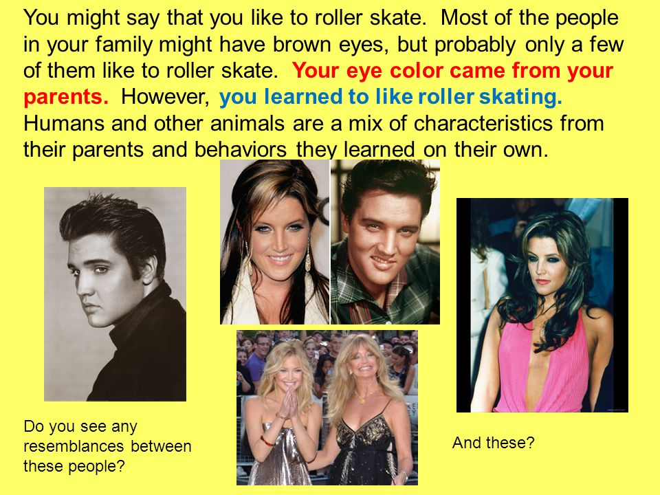 You might say that you like to roller skate
