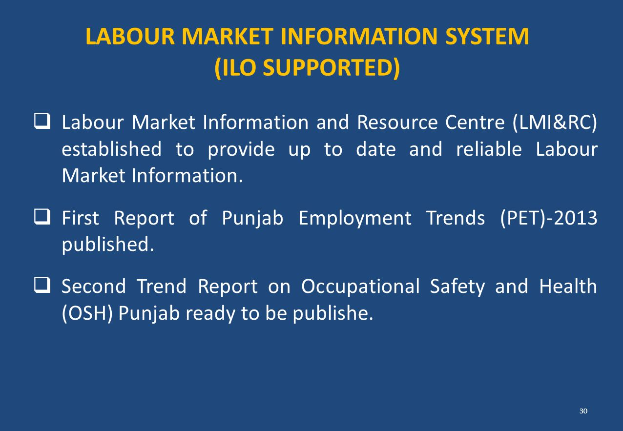 Labour Market Information System (ILO SUPPORTED)