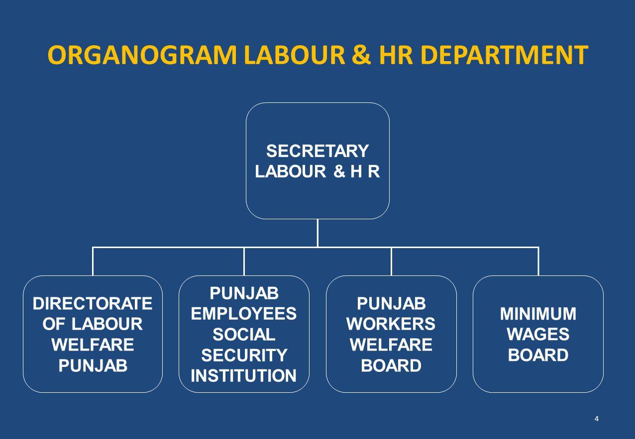 ORGANOGRAM LABOUR & HR DEPARTMENT