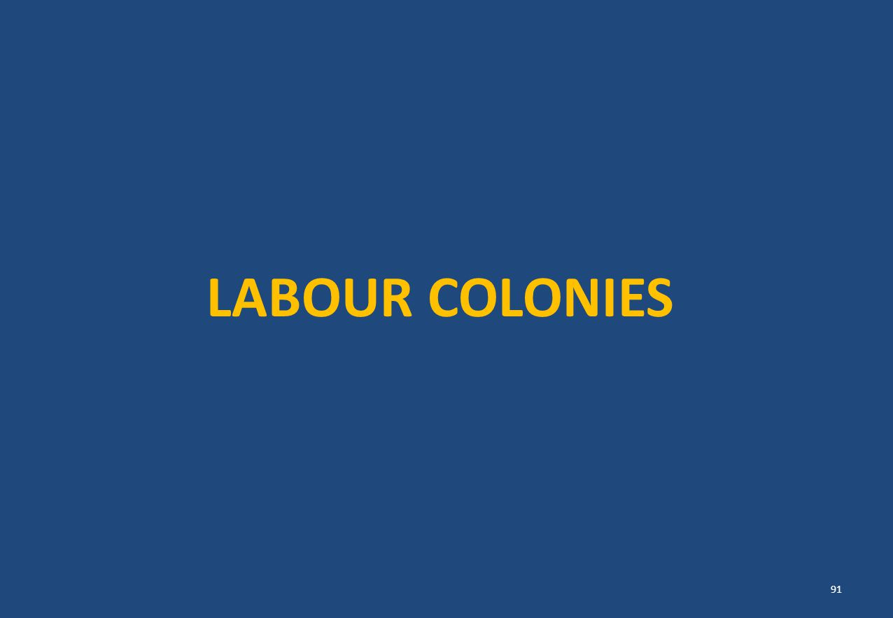 LABOUR COLONIES