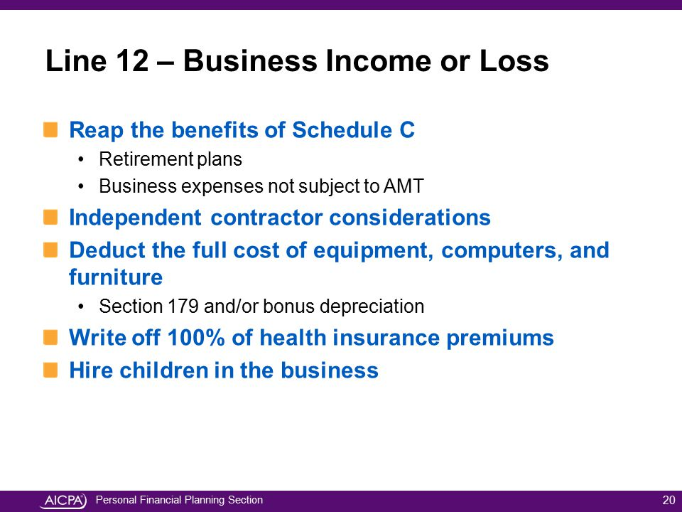 Line 12 – Business Income or Loss