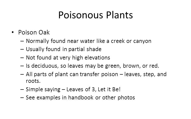 Poisonous Plants Poison Oak