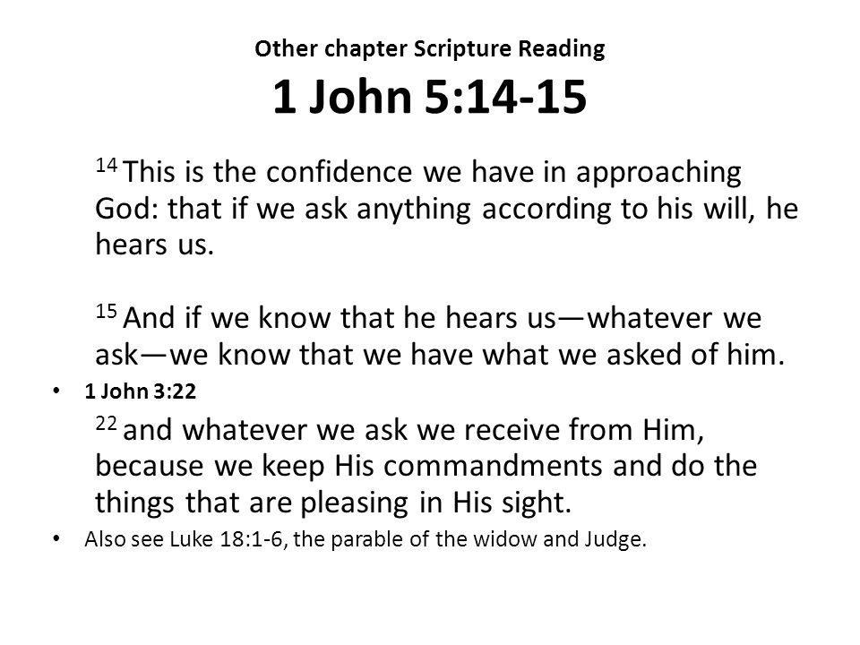Other chapter Scripture Reading 1 John 5:14-15