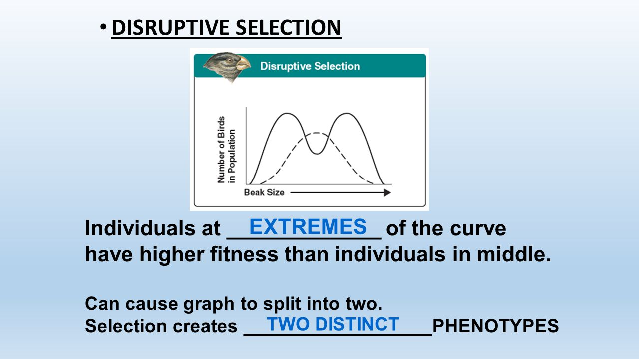 DISRUPTIVE SELECTION Individuals at _____________ of the curve