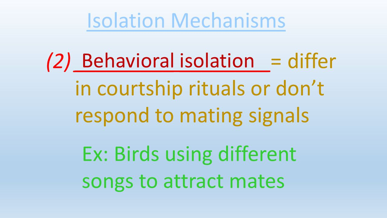 Ex: Birds using different songs to attract mates
