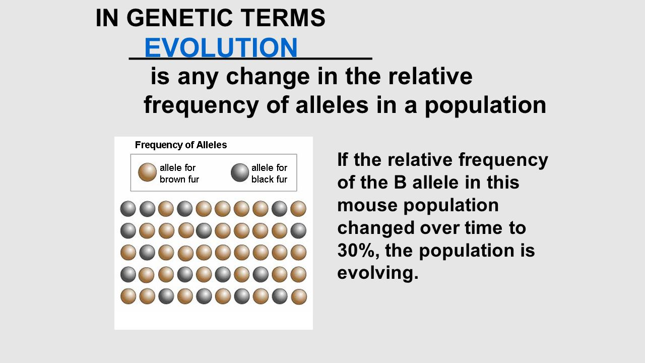 EVOLUTION IN GENETIC TERMS __________________