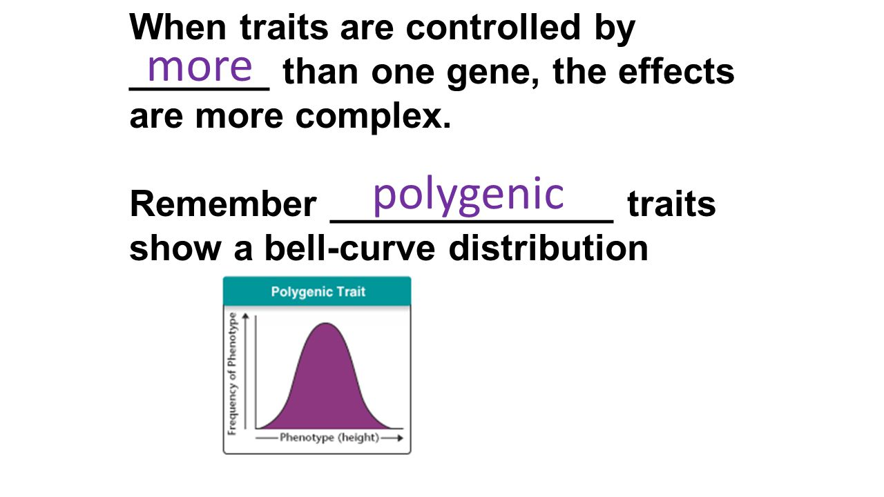 When traits are controlled by _______ than one gene, the effects are more complex.