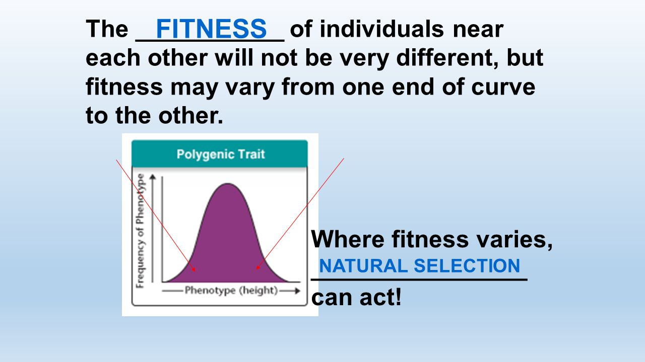 The ___________ of individuals near each other will not be very different, but fitness may vary from one end of curve to the other.