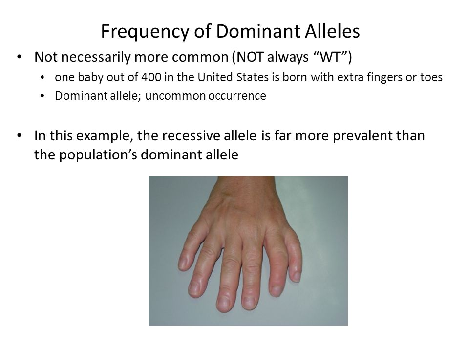 Frequency of Dominant Alleles