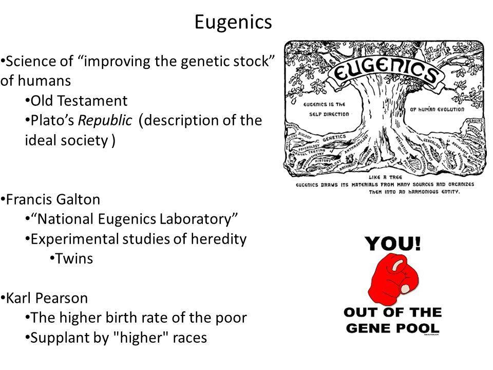 Eugenics Science of improving the genetic stock of humans