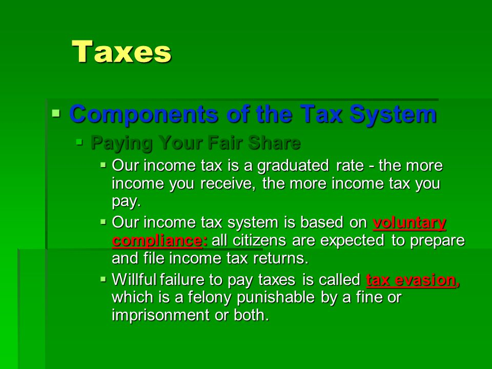 Taxes Components of the Tax System Paying Your Fair Share