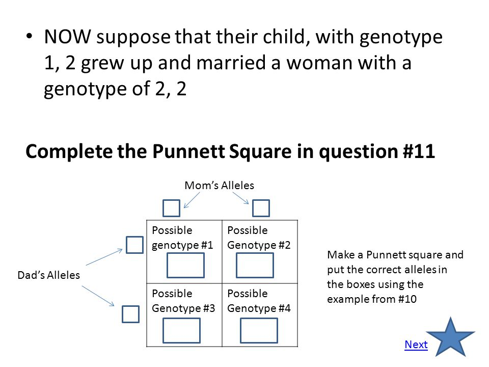 Complete the Punnett Square in question #11