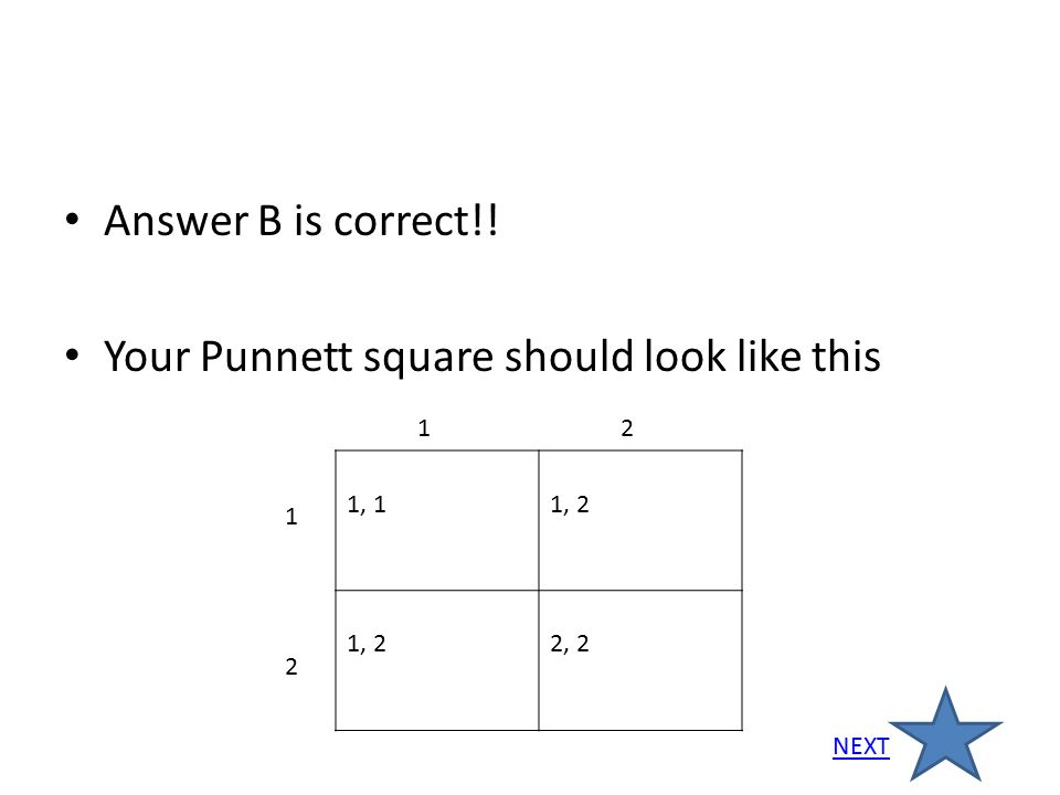 Your Punnett square should look like this