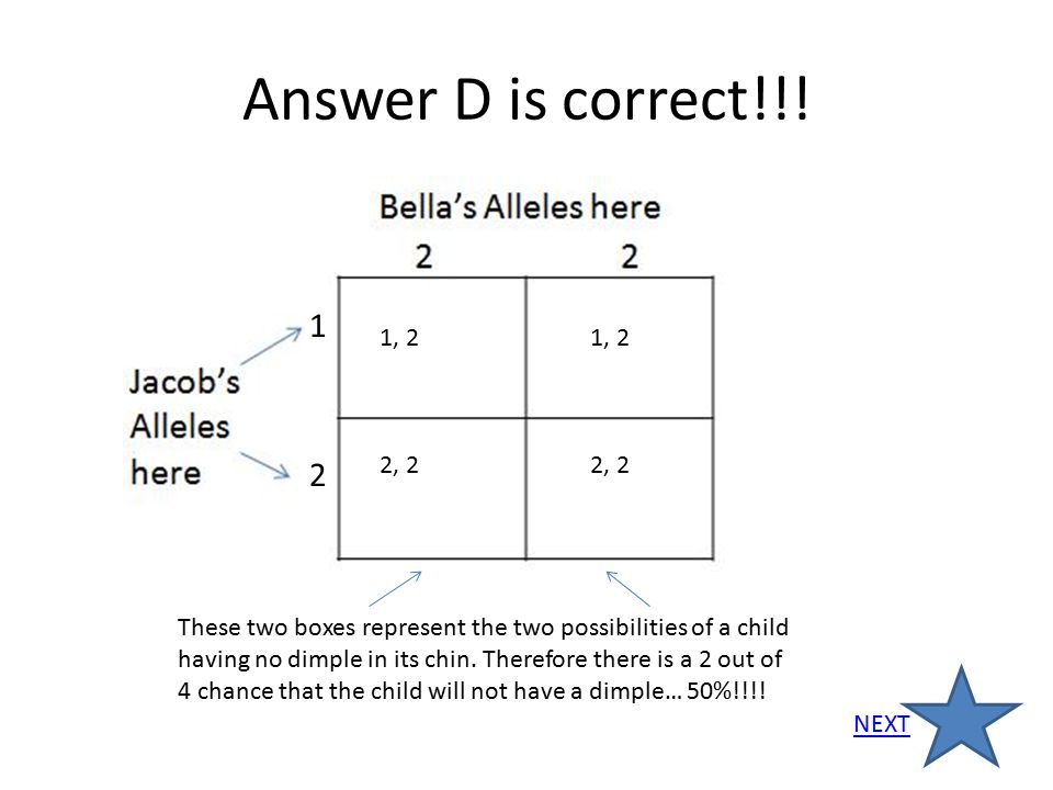 Answer D is correct!!! 1. 1, 2 1, 2. 2, 2 2, 2. 2.