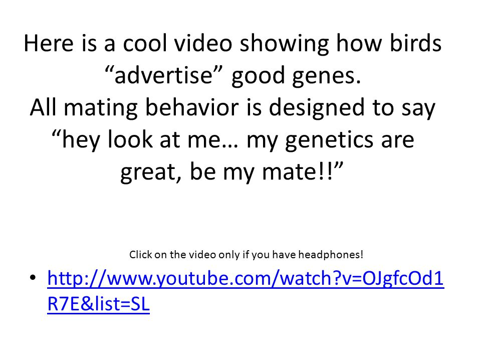 Here is a cool video showing how birds advertise good genes