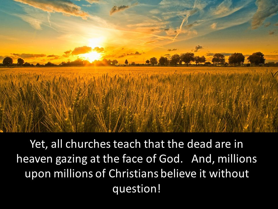 Yet, all churches teach that the dead are in heaven gazing at the face of God.