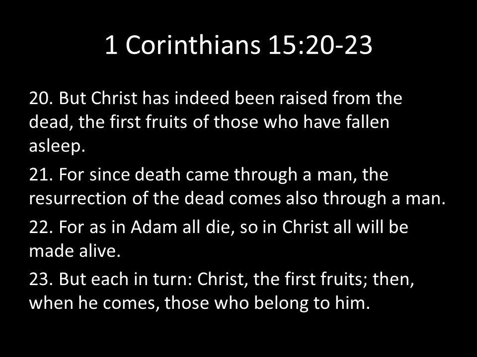 1 Corinthians 15:20-23