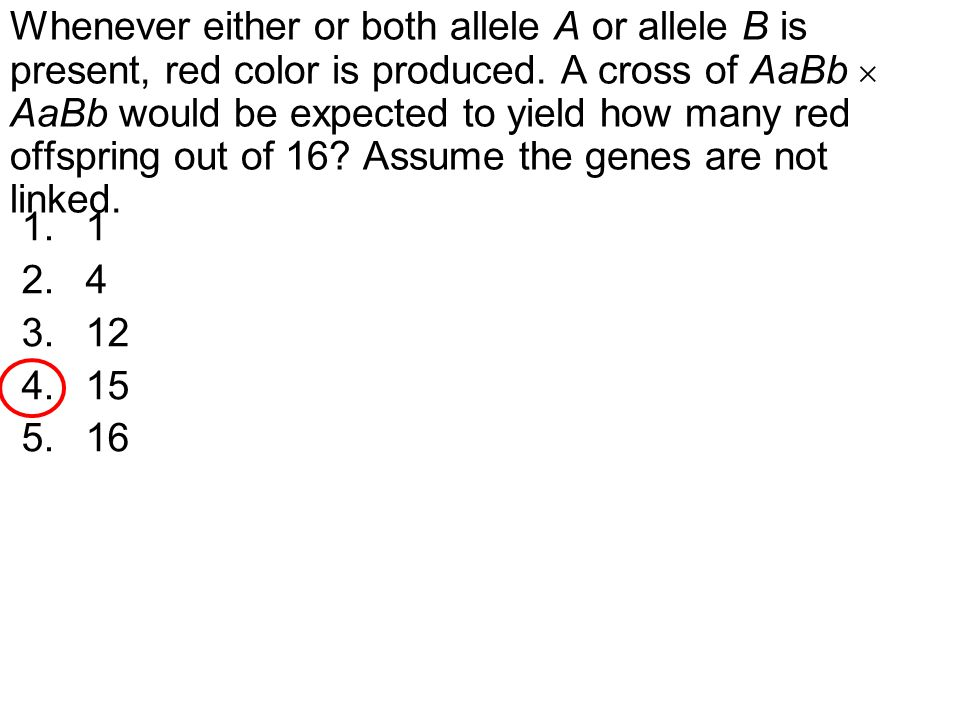 Whenever either or both allele A or allele B is present, red color is produced. A cross of AaBb  AaBb would be expected to yield how many red offspring out of 16 Assume the genes are not linked.