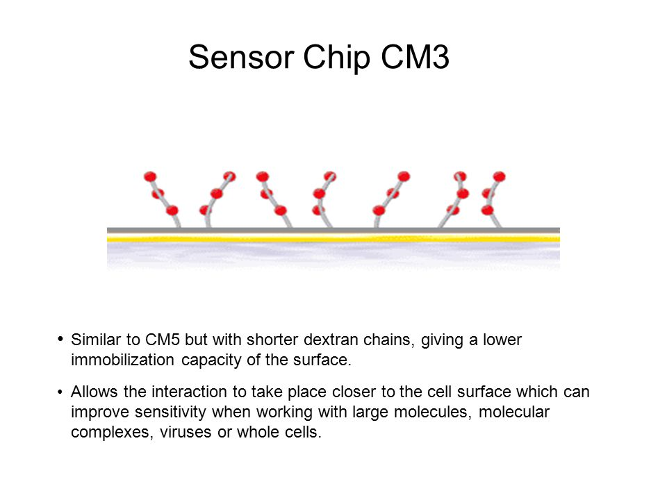 Sensor Chip CM3 Similar to CM5 but with shorter dextran chains, giving a lower immobilization capacity of the surface.