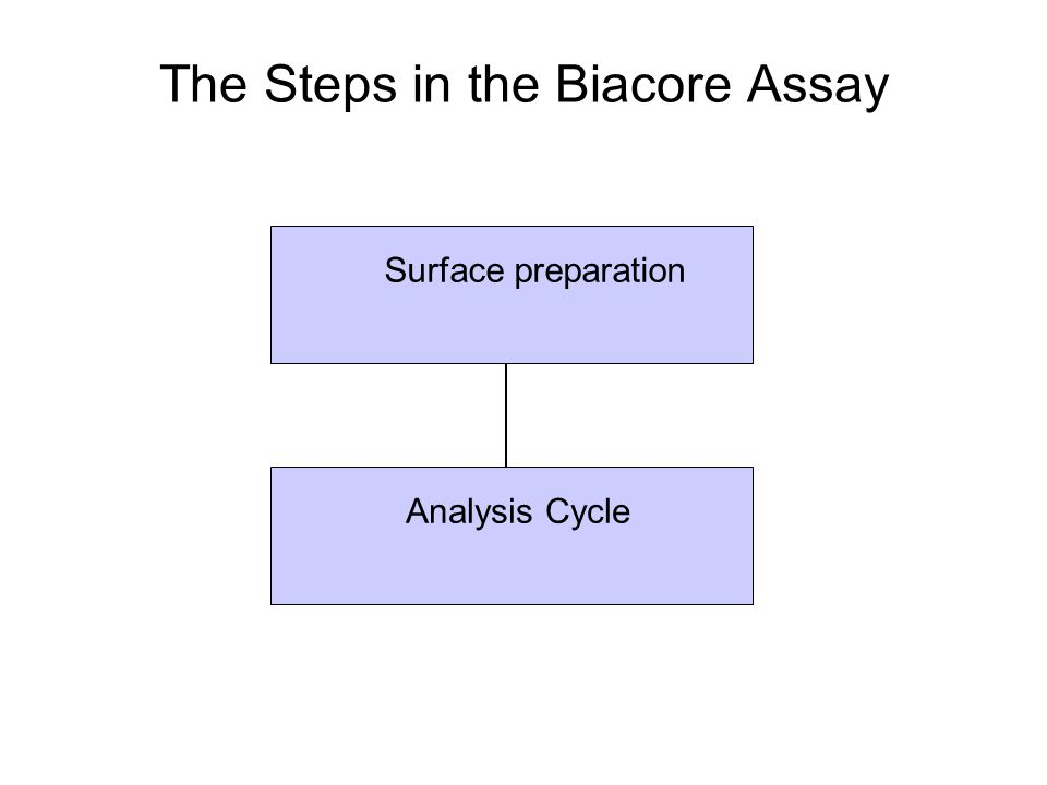 The Steps in the Biacore Assay