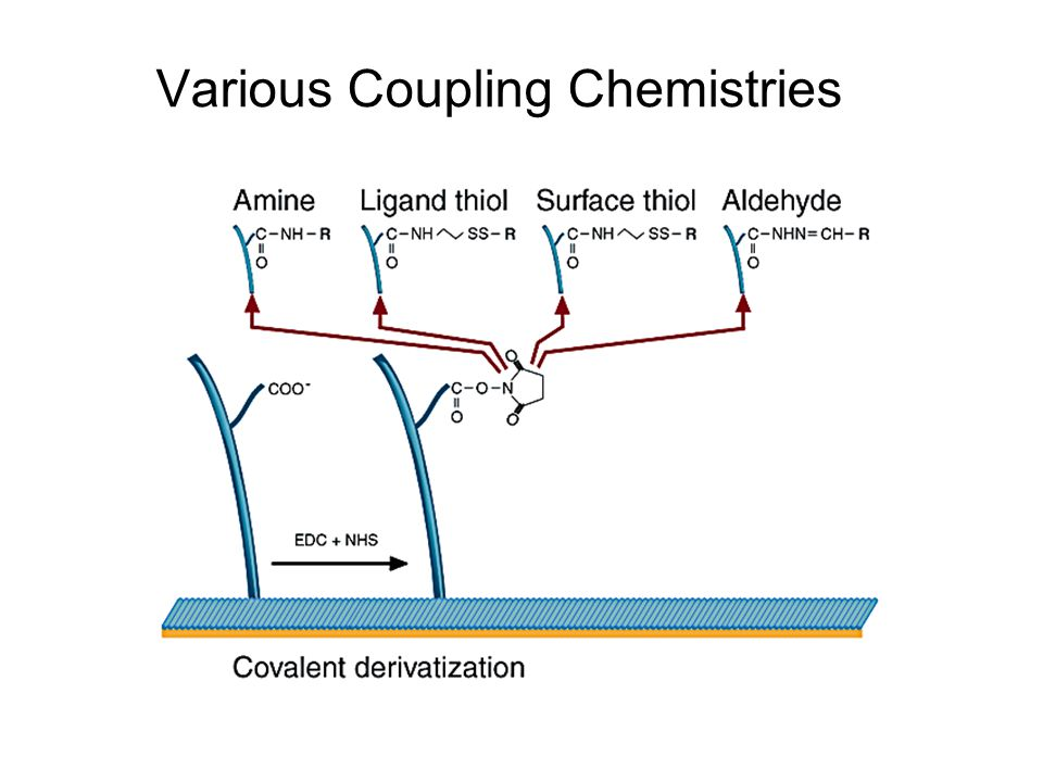 Various Coupling Chemistries