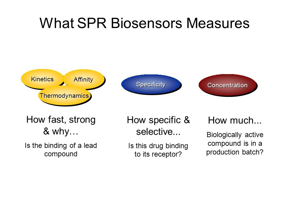 What SPR Biosensors Measures