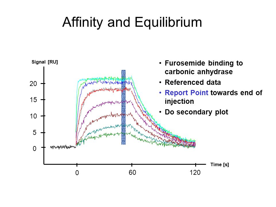 Affinity and Equilibrium
