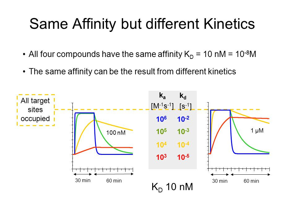Same Affinity but different Kinetics