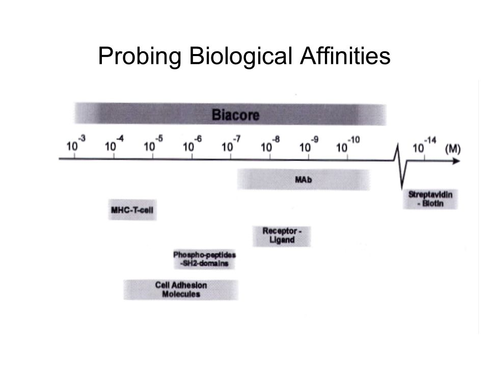 Probing Biological Affinities