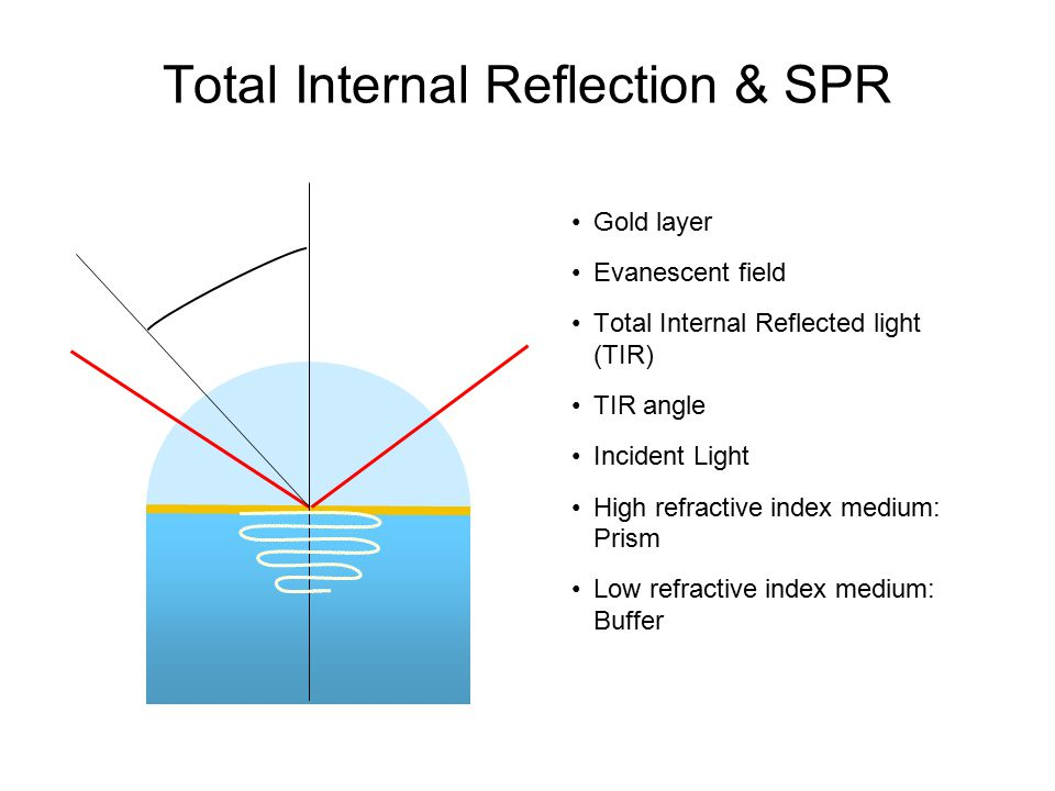 Total Internal Reflection & SPR