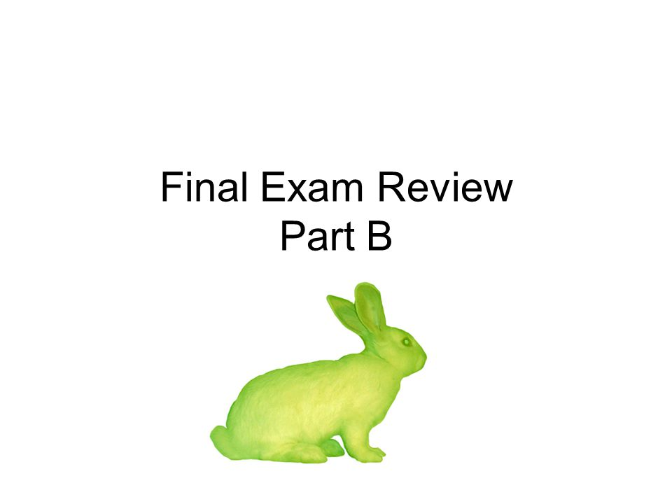 Final Exam Review Part B
