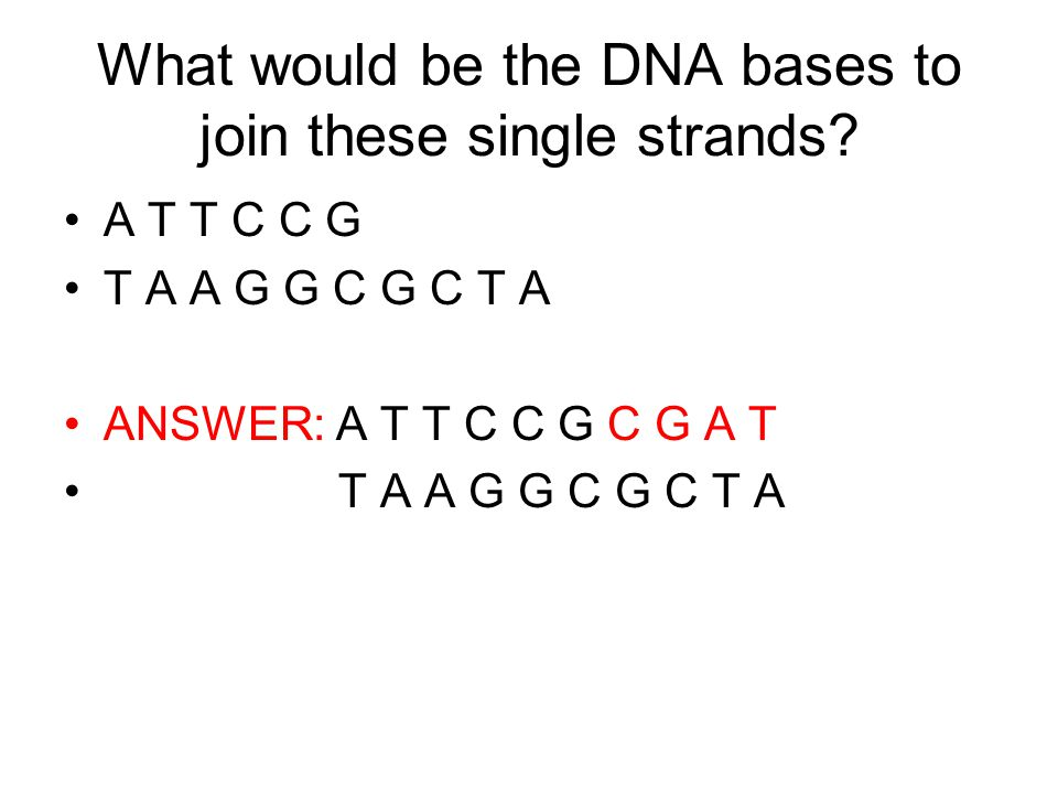 What would be the DNA bases to join these single strands