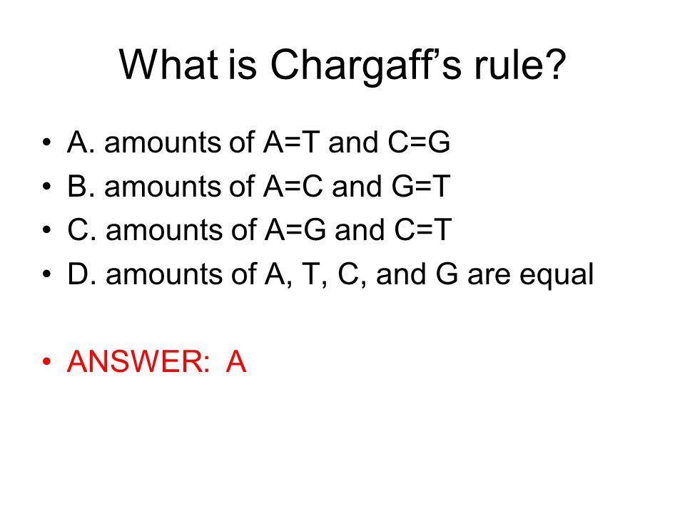 What is Chargaff's rule