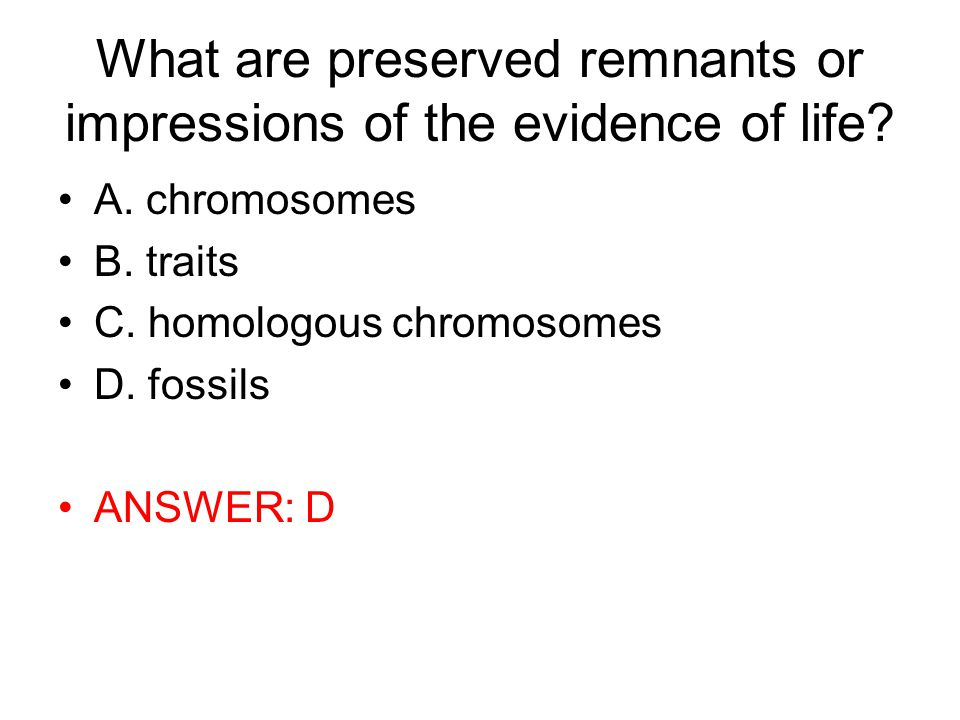 What are preserved remnants or impressions of the evidence of life