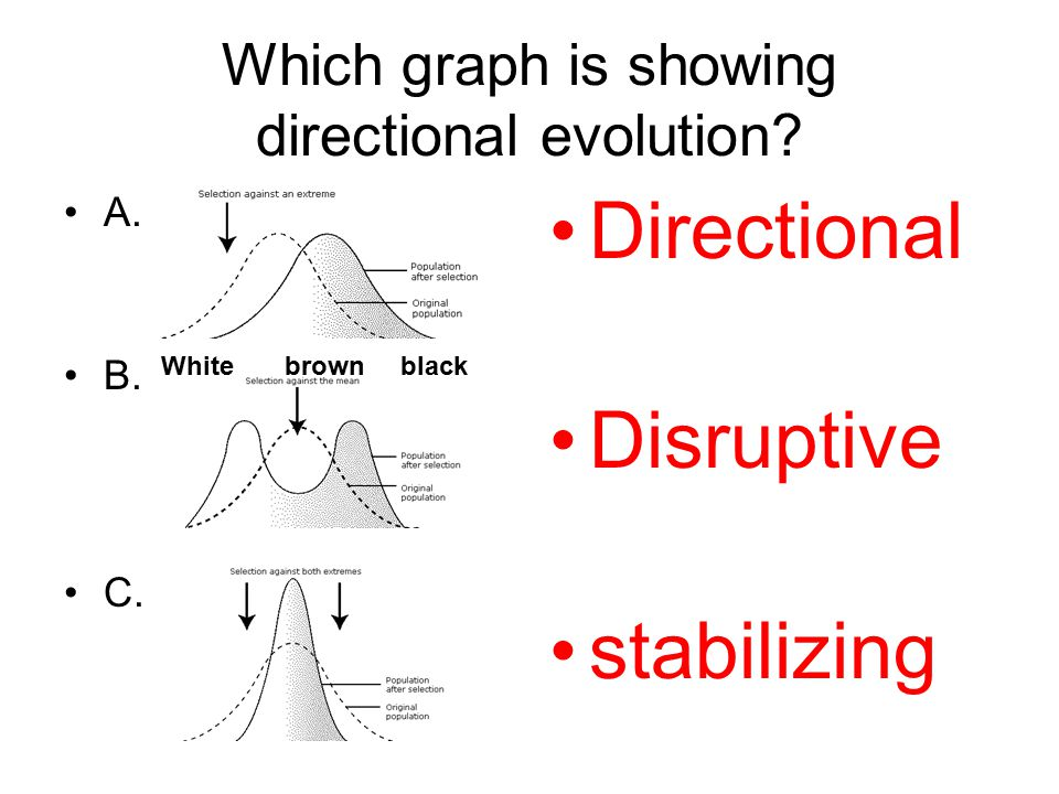 Which graph is showing directional evolution
