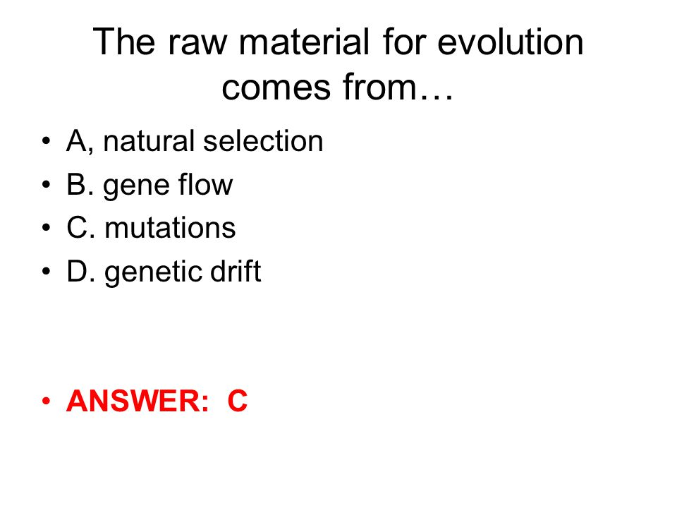 The raw material for evolution comes from…