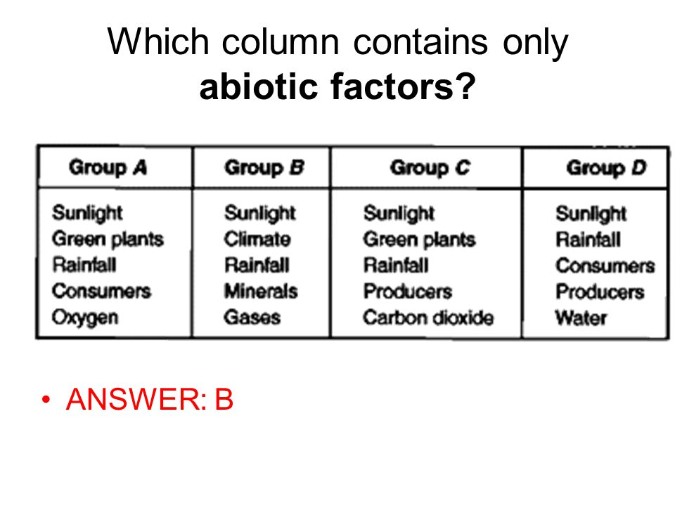 Which column contains only abiotic factors