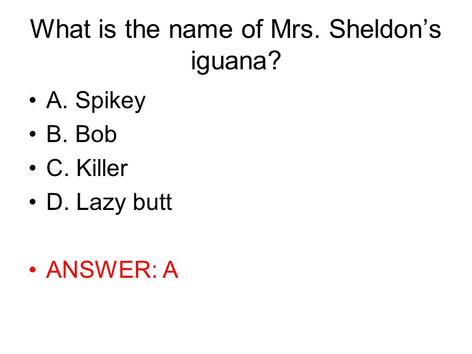 What is the name of Mrs. Sheldon's iguana
